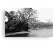 Hanging Tree - Black and White Canvas Print