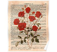 Red Roses on Corinthians Poster