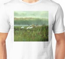 Spoonbills in my backyard Unisex T-Shirt