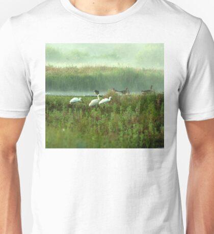 Spoonbills in my backyard Unisex T-Shirt