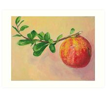 Pomegranate fruit still life Art Print