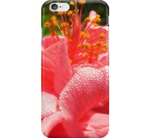 Dew-kissed Hibiscus iPhone Case/Skin