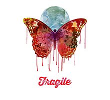 Fragile Photographic Print