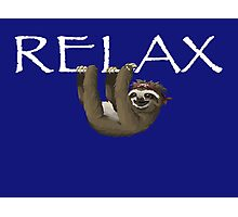 Relax Sloth Photographic Print