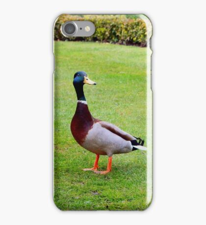 Are you following me? iPhone Case/Skin