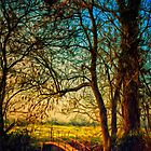 Evening walk, Bungay by Simon Duckworth