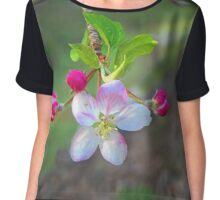 Apples in Blossom Chiffon Top