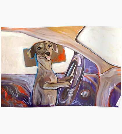 Dog Driving Poster
