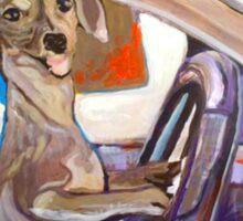 Dog Driving Sticker