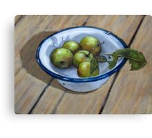 Green Apples in Old Enamel Bowl, Oil Pastel Painting Canvas Print