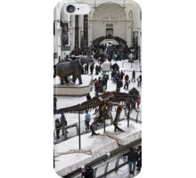 Field Museum Main Hall iPhone Case/Skin