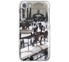 Field Museum Main Hall iPhone Case/Skin