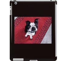 The Zen of Marley iPad Case/Skin