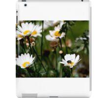Bluebottle on Flower. iPad Case/Skin