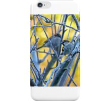 Sparrow in Winter 4.  iPhone Case/Skin