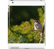 House Sparrow 1. iPad Case/Skin
