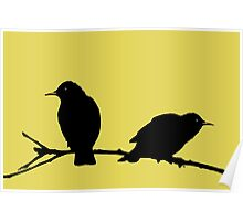Starlings Yellow. Poster