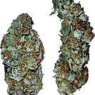 420 Buds #2 by sensameleon