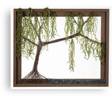 Spring Willow Tree Canvas Print