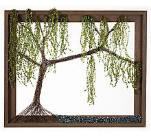 Spring Willow Tree Photographic Print