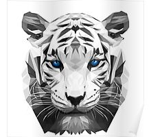 Tiger wild low poly white animal nature Poster