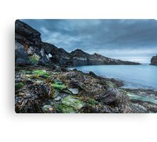 Seaweed and rocks - The Blue Lagoon Metal Print