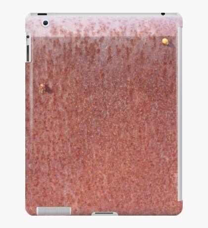 Two Ladybugs iPad Case/Skin
