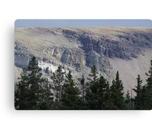 New Mexico - Wheeler Peak Area 12,000 ft - Red River Canvas Print