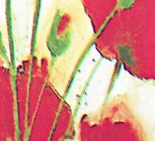 Red Poppies Sticker