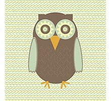 Brown Owl Photographic Print