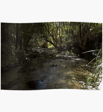 Tranquil nature Poster