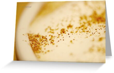 Frothed Milk and Cinnamon by Yannik Hay