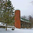 A Barn in Winter by Tom  Reynen