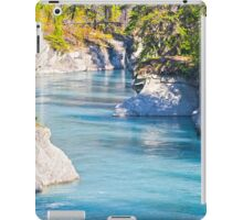 Verdant Creek - Vermillion Crossing - Kootenay National Park - BC iPad Case/Skin