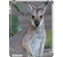 Mama Wallaby iPad Case/Skin