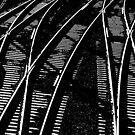 Lines Of Lines,Granville,Australia by muz2142