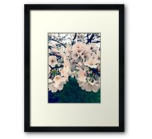 Flower Case / Sticker Framed Print