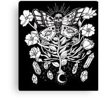 Death Moth Rising Canvas Print