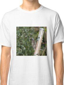 Starling plumage Classic T-Shirt