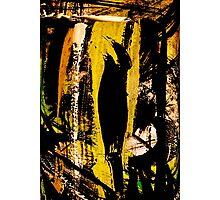 blackbird.... Photographic Print