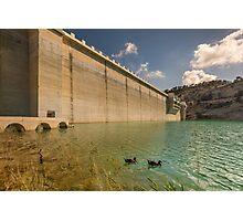 Those dam ducks Photographic Print