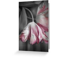 Delicate Tulips Greeting Card