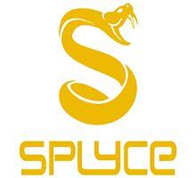 SPLYCE EU LCS Photographic Print
