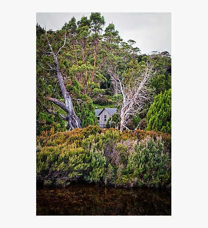Bush Hut Photographic Print