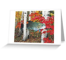 Forest Trout Greeting Card