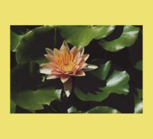 Exotic Colors - A Soft Coral Waterlily Baby Tee