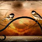 Watch my Back I'll Watch Yours - Blackcapped Chickadee by Yannik Hay