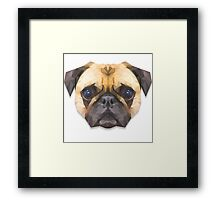 Sir Pugsley of Poly Manor Framed Print