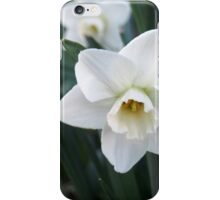 Lady and Her Buds iPhone Case/Skin