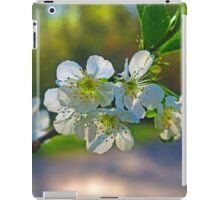 Cheery Blossoms iPad Case/Skin
